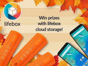 """Cloudless autumn with lifebox"""